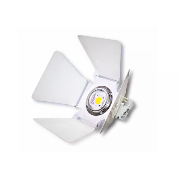 Светодиодный прожектор для интерьера COB c регулируемыми шторками 20W 220V white
